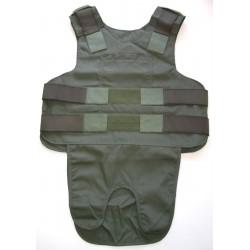 Carrier for POINT BLANK Ballistic Vest